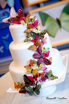 Butterfly decorated wedding cake. Butterfly themed wedding.