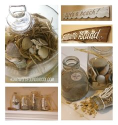 Seashell Displays by HOMEWARDfound Decor.