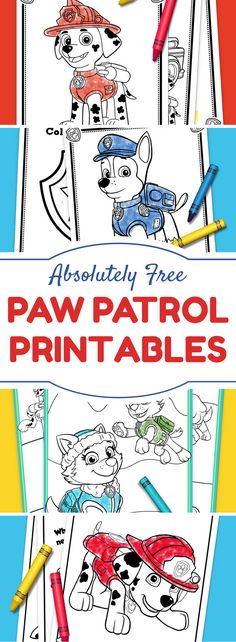 Paw Patrol Party Ide