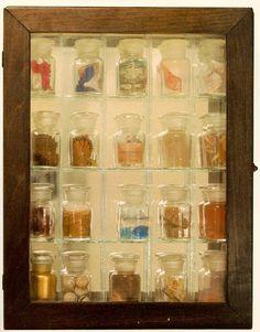 cornell.pharmacy 194