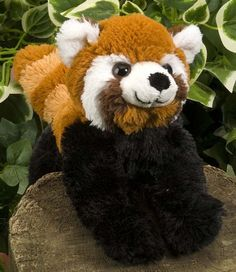 Hug Ems Small Red Panda at theBIGzoo.com, a toy store that has shipped over 1.2 million items. amazoncom, wild republ, red pandas, hug em, toy store, small red, republ hug