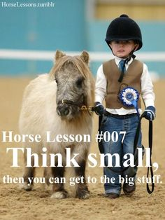 horse lessons