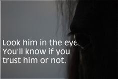 horse quotes about trust - Google Search