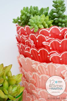 succulent crafts with cupcake liner planter - so cute! #marthastewart #marthastewartcrafts #plaidcrafts #diy #crafts #12Monthsofmartha