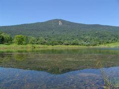 I've hiked Mt. Greylock.