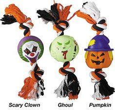 Halloween | Pet Costumes | Pet Treats | Pet Toys