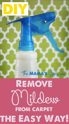 DIY Cleaner for getting mildew out of your carpet