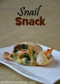 Snail Scroll Snack   Wildlife Fun 4 Kids