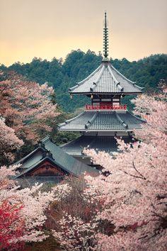Kimpusen-ji Pagoda - Mount Yoshino, Nara, Japan