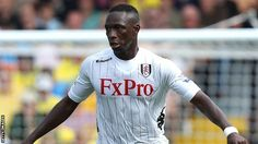 Fulham's Mahamadou Diarra could face up to five months on the sidelines amid fears he has damaged cruciate ligaments.