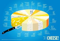 Cheese!   Visual.ly