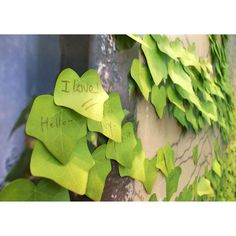 ivy leaf sticky notes #productdesign