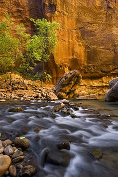 Zion Narrows -  a little bend in the canyon