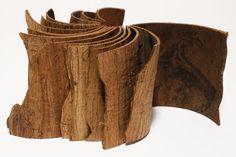 Susan Porteous - bark book