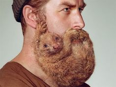 These Dudes' Beards Get Shaped Up To Look Like Animals