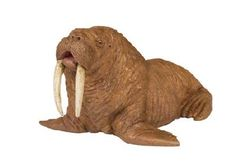 Wild Safari Walrus at theBIGzoo.com, an animal-themed store established in August 2000.