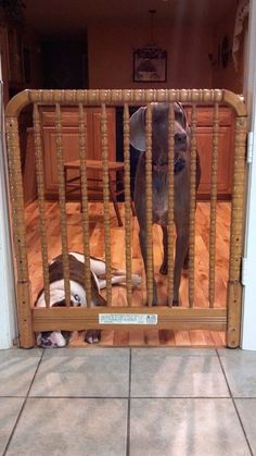 Perfect Re purposing Of Your Old Baby Crib Into A Pet/Baby Gate By Adding Hinges and Simple Latch.