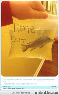 Time Out fish tank