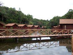 Amazon Jungle Lodge -  Manaus Brazil