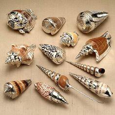 Enfeites de conchas  http://dekorella.hu/2012/07/natur-kagylo-es-csigahej-ezust-kontosben-diy/