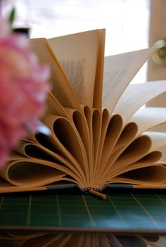 Beginnings of a book mobile