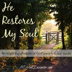 A heart-stirring glimpse into the hardships of life, and the God who wants to restore the ravaged souls of His children. (Psalm 23:5) http://adivineencounter.com/monday-minute-he-restores-my-soul psalm 235