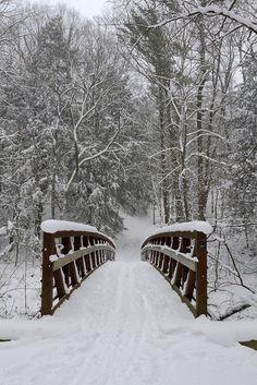 Wintery Aman Park - Lake Michigan