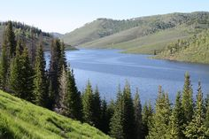 ~ Fish Lake ~ Utah....
