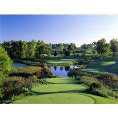 TPC Michigan Golf Course Photo