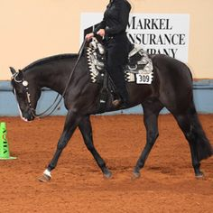Spring Horse-Training Tip: Use a serpentine to practice lengthening and shortening your horse's stride.