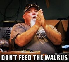 Don't Feed the Walrus More