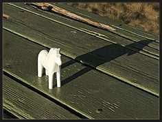 White Horse on a Green Table by ohkayeor (Oregon here I come), via Flickr