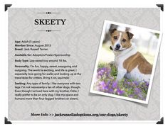 Skeety is today's fe