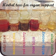 herbal teas for organ support
