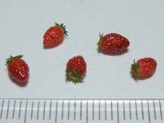 Strawberry tutorial in Japanese  la meilleure fraise !!!