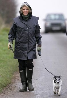 Camilla Parker Bowles, Duchess Of Cornwall, Out Walking Her Dog in Sandringham.