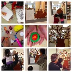 Transforming our Learning Environment into a Space of Possibilities: A Kindergarten and early childhood educator blog