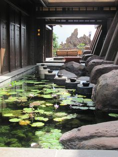 Disney's Aulani Resort & Spa, Ko Olina, Oahu, Hawaii. Would like a mini staycation right here w/the family!