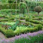 nice veggie garden