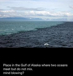 Salt causing the two ocean bodies of water to have different densities