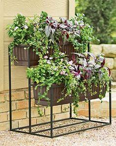 Garden Ideas On Pinterest