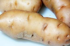 How to Grow Potatoes and Harvest Them
