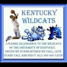 Go Kentucky Wildcats