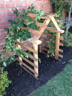 pallet trellis - Would love this for my pea plants and cucumber plants  Maybe hubs can building a couple of them? building a trellis, planting peas, cucumb plant, pallet trellis, pea plants, pallet build for garden, pea trellis, cucumber garden, cucumber plant