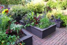 different color for raised garden beds