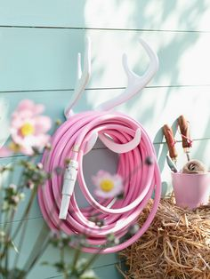 Pink garden hose.