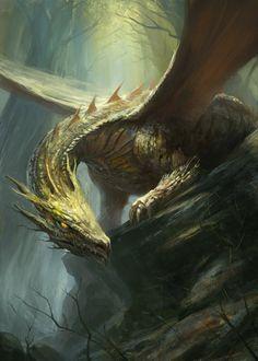 """Dragons, dragon  http://gerezon.deviantart.com/art/Forest-Dragon-369452120"""