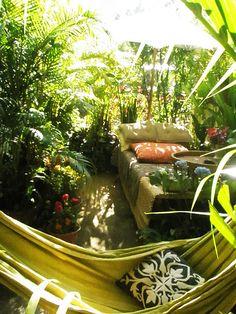 plant, outdoor living, outdoor rooms, dream, patio, backyard, hammock, outdoor spaces, garden spaces