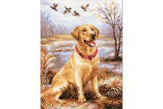 Labrador - borduurpakket - Riolis #hond # honden