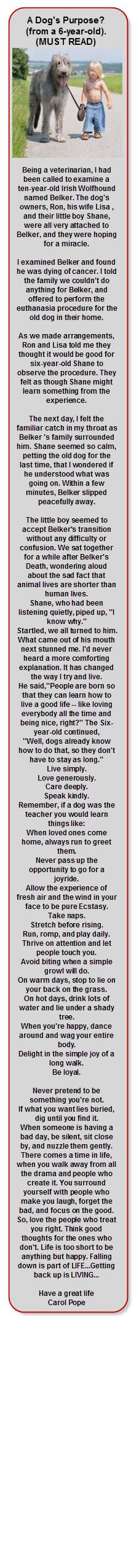 A Dog's Purpose?  (from a 6-year-old).MUST READ